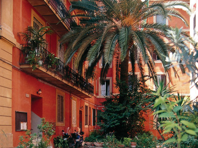 Bellissimo B&B vicino ai Musei Vaticani bagno privato tutti i confort free WI-FI